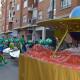carnaval-tarancon9