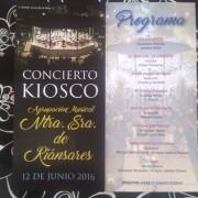 Concierto-agrupacion-musical