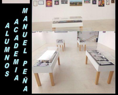 CARTEL ACADEMIA MANUEL PEÑA 19 I